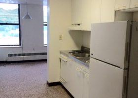 516 Shelden Ave 1 Bed Kitchen